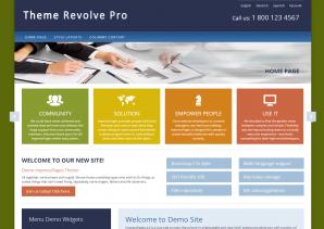 Revolve Pro